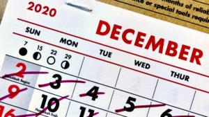 Term Limits Calendar
