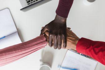 Diversity partnership